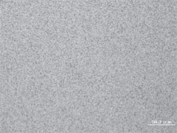 Metal texture of TSE-212F