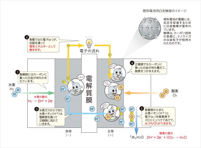 燃料電池の電極には、反応を促進するために白金触媒が塗布されています。負極で出た電子(e-)が回路を通って電気エネルギーとして働きます。