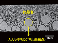 AuSn組成の違いによるリッド断面組織の変化のイメージ(AuSn20)